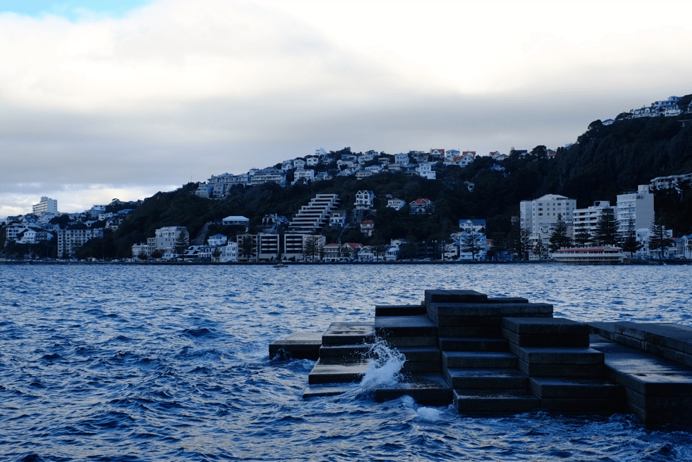 welly1