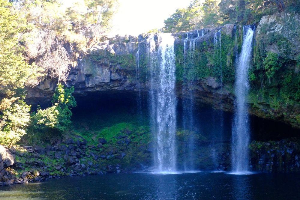 wodospad_kiwi